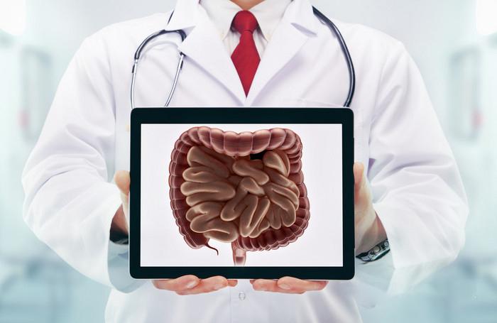 衰老从肠道开始,肠健康